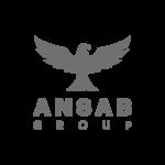 designers_logos_0011_ANSAB_Group